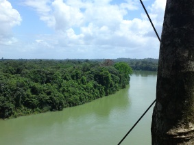 Climbing the three tops in Surinam