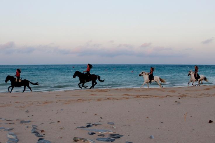 Horse Riding Tarifa beach
