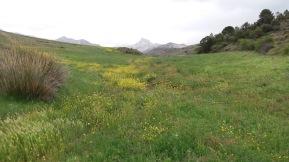 Sierra Nevada Spain 2