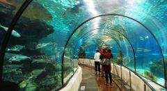The Benalmadena Sea Life Centre